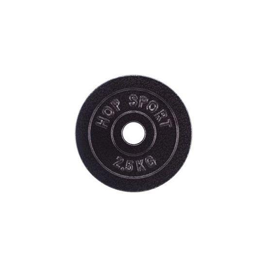 Obciążenie żeliwne 2,5kg (31 mm) Hop-Sport